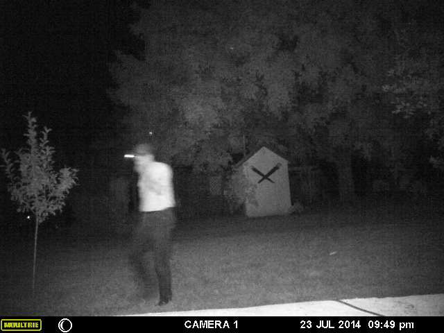 A game camera capture claimed to show the famed Papalope of Bourbon County.